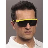 Schutzbrille CLAREX, getönte Sichtscheibe