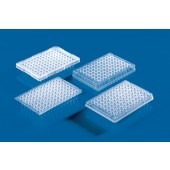 96 Well PCR Platten ohne Rahmen, Pck à 50