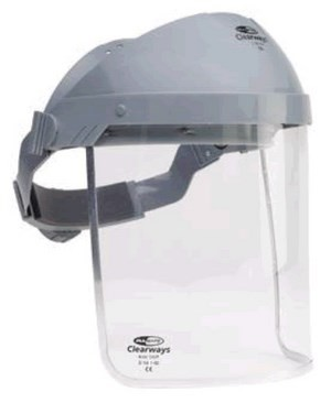 Face visor Protecteur P1, with head fixture