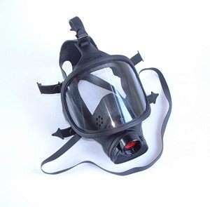Full face mask X-plore 6300